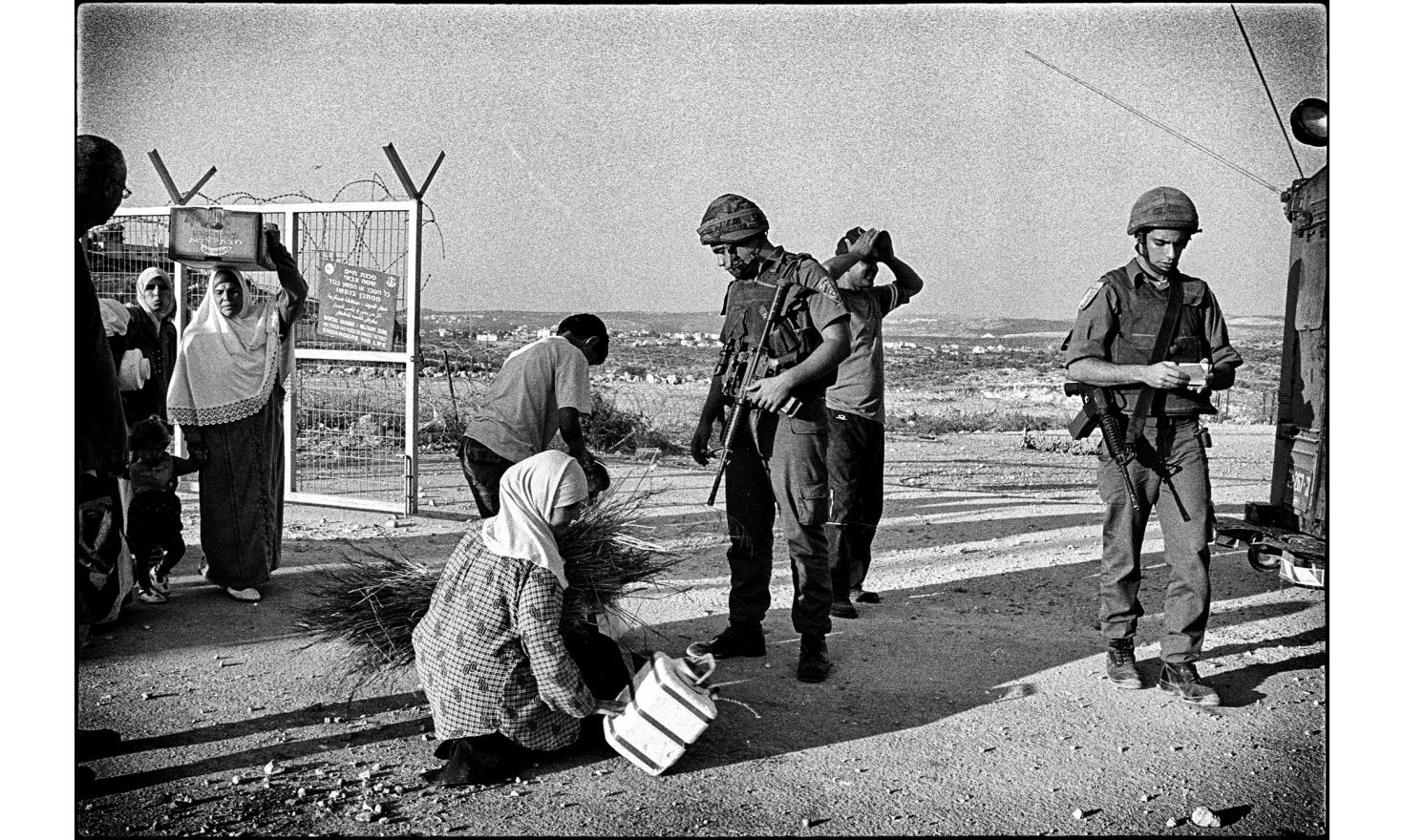 Separated from their olive groves by the security fence,  Palestinian of the village of Mas'ha are being searched by  Israeli soldiers. Mas'ha, Palestinian Autority. October 2004.